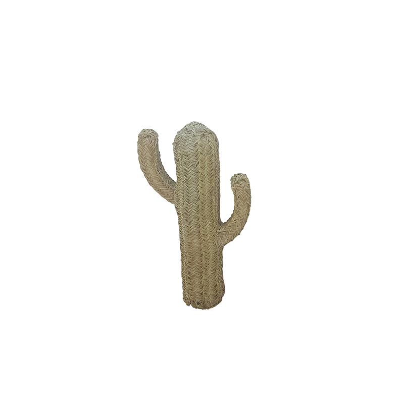 Cactus - Rodrigo : Marque Étincelles